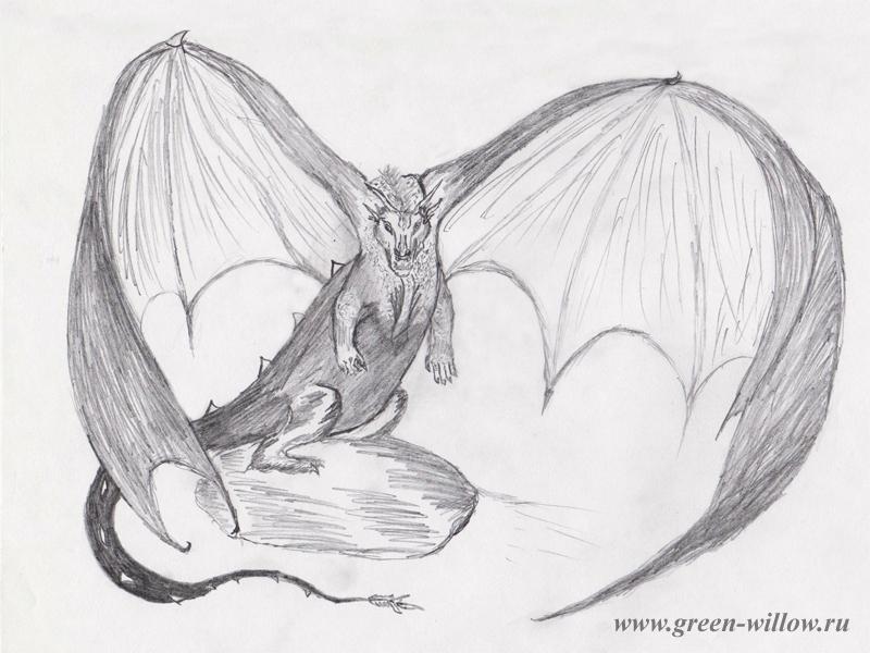 рисунок дракона карандашом