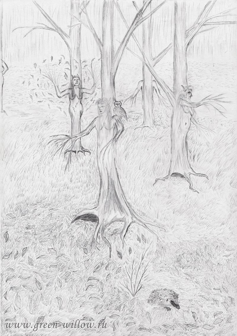 Лес дриад, рисунок карандашом